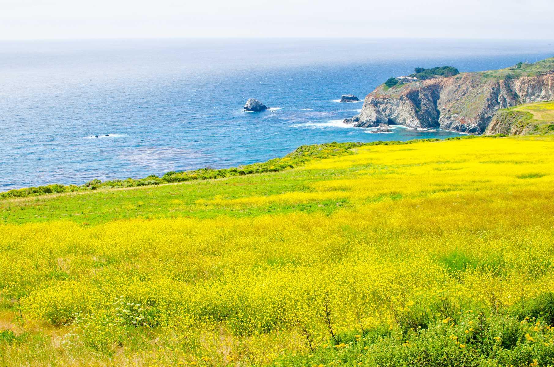San Luis Obispo California Road Trip