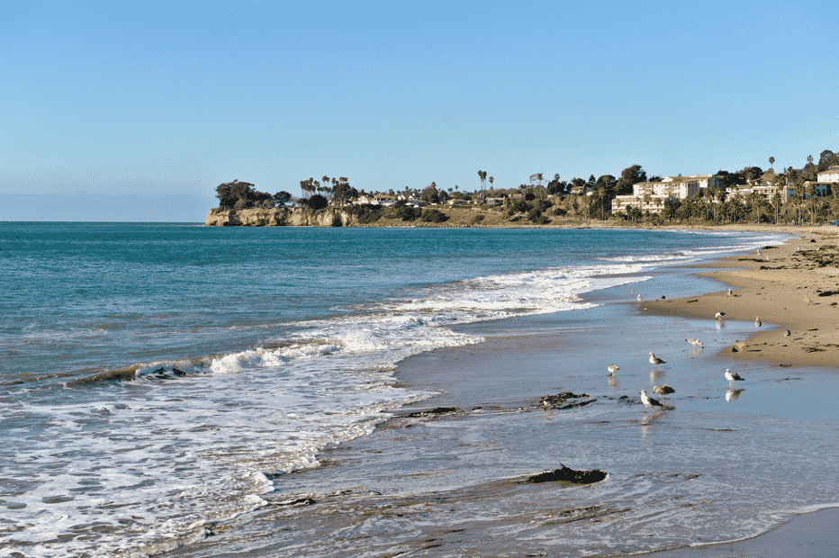 Leadbetter Beach in Santa Barbara CA with birds feeding in the shallow waters