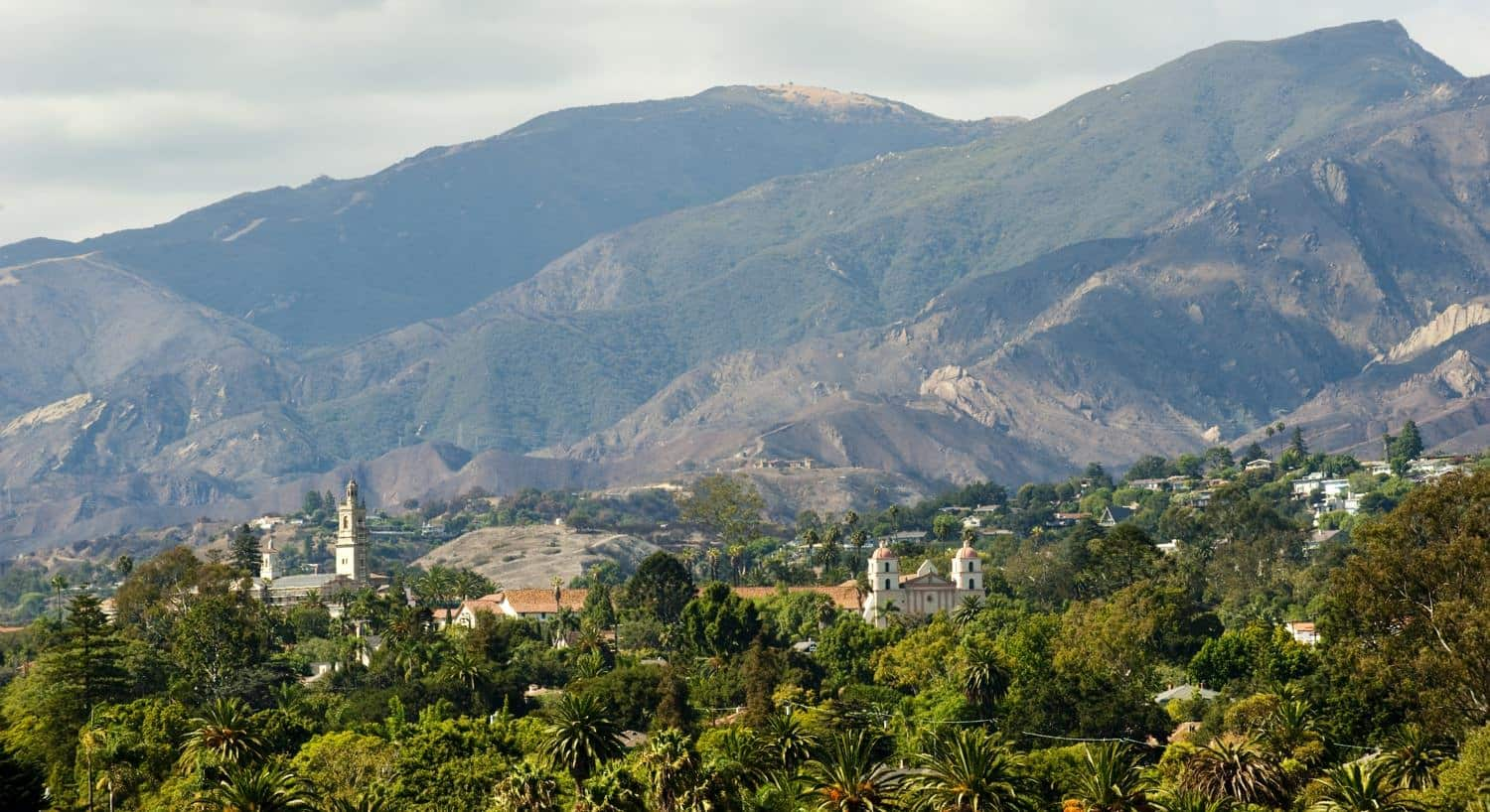 Aerial view of Santa Barbara with tops of buildings peeking through tree tops and mountains in background
