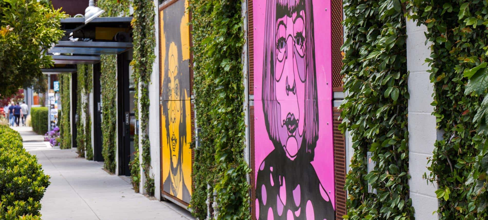 Santa Barbaba sidewalk with colorful drawings on the walls alternating with climbing green vines