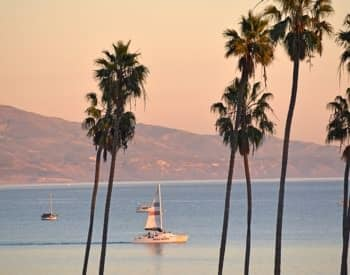 A few sailboats in the Pacific Ocean with palm trees in the foreground and mountains in the background