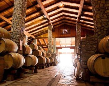 Wood vaulted room with stone pillars and stone floor, filled with oak wine barrels