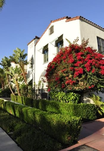 Exterior view of Eagle Inn, ivory stucco, red tile roof, pruned green shrubs, palm trees and red flowering tree