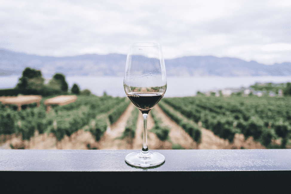 Wine glass with red wine on a balcony ledge overlooking a vineyard with water and hills in the distance